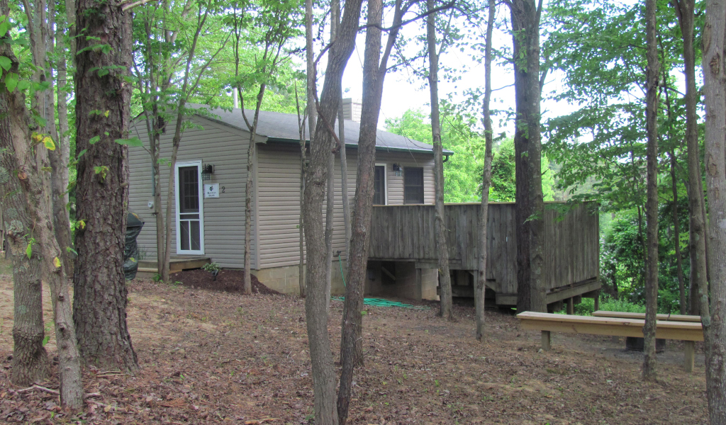 side view of grey siding cabin with tall trees around the back deck area